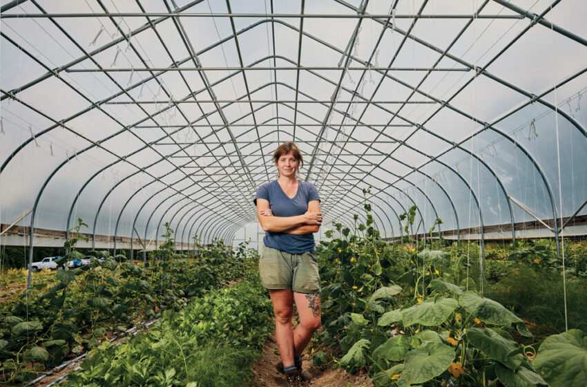 A LOOK AT THE SERIOUS GROWTH IN OUR LOCAL FOOD SYSTEM