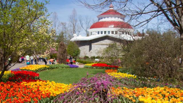 Cincinnati Zoo Is the Best Zoo in America, 'USA Today' Readers Say
